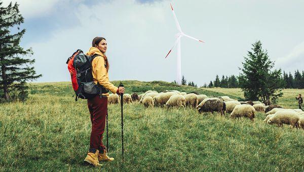 Quel est le bilan environnemental de l'énergie éolienne ?